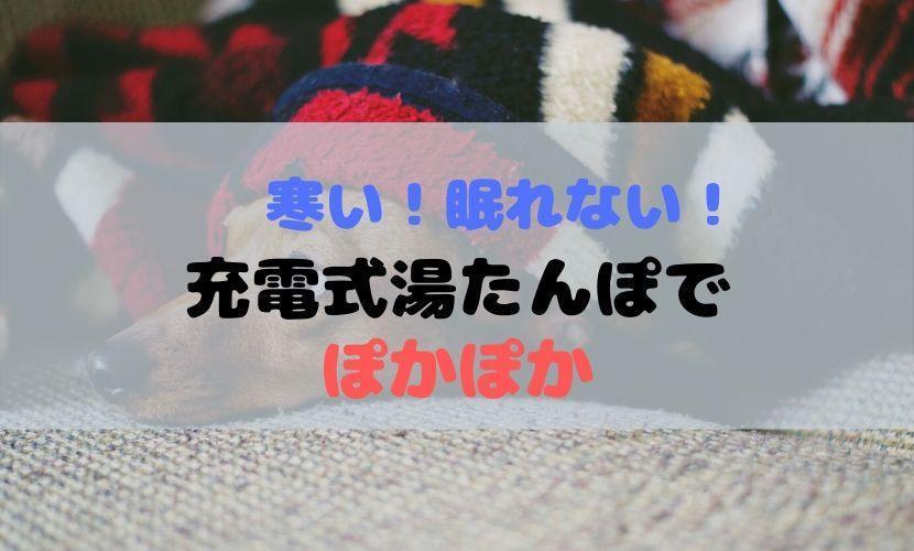 f:id:ojyagamaru:20200120124229j:plain