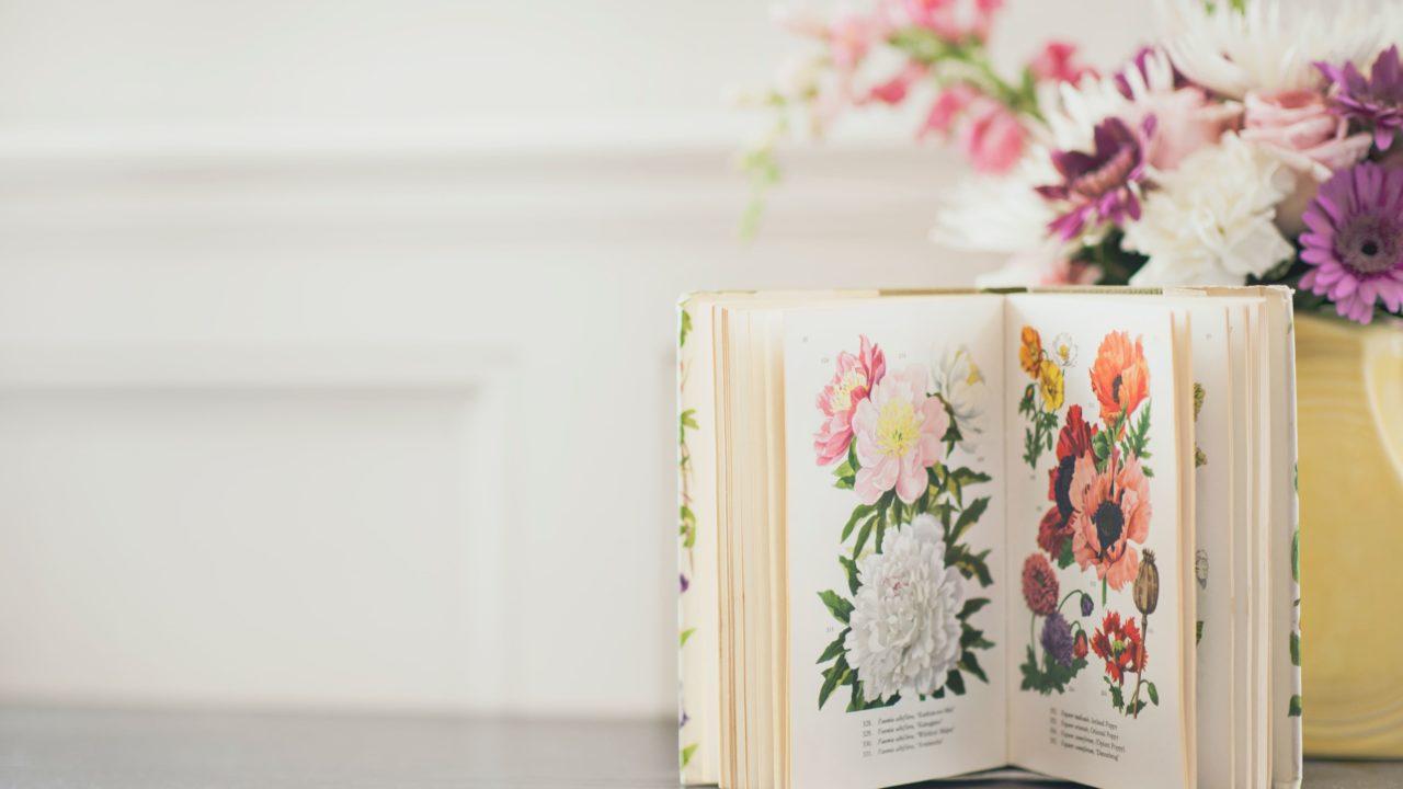 花の絵がかかれている本