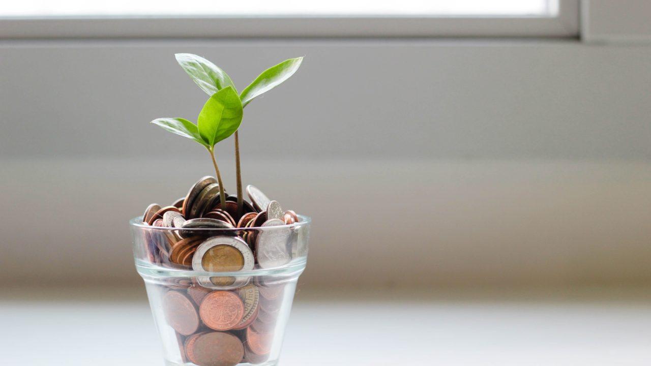 コップの中のコインとそこから伸びる芽