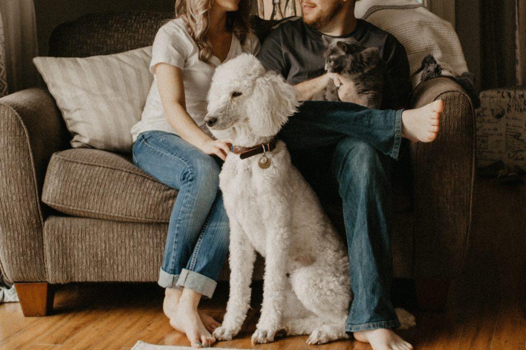 犬とたわむれる夫婦