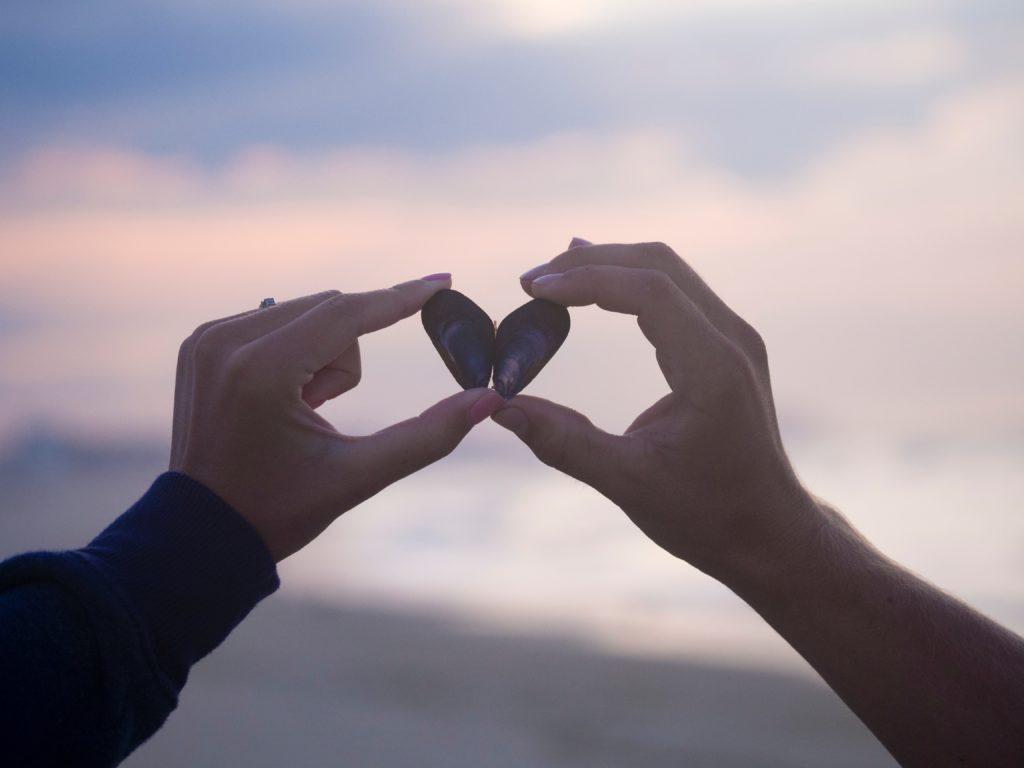 貝殻でハートを作る夫婦