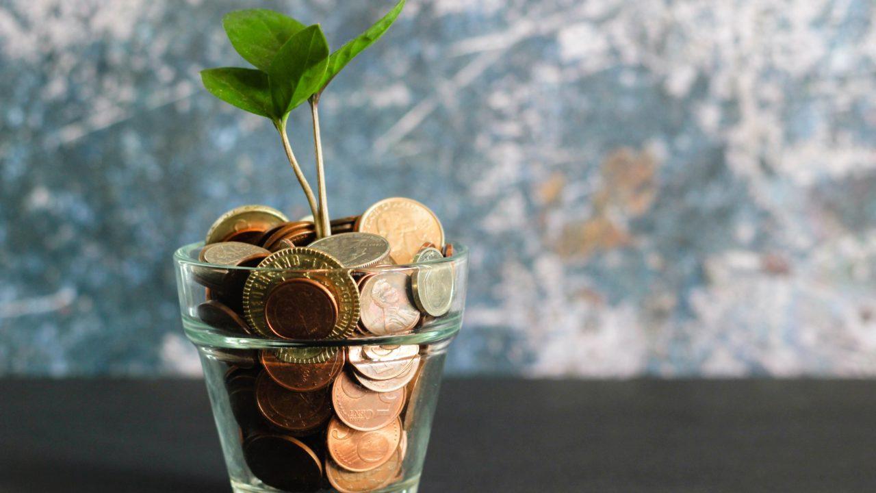 コップに入ったコインから芽が出る